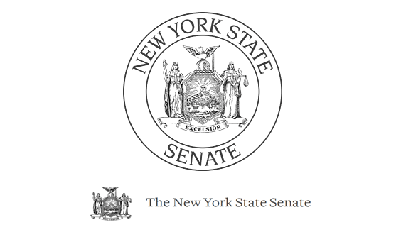"The New York State Senate Attacked by Hacker Group Swan: Press Release ""Stop War in Syria!!!"""