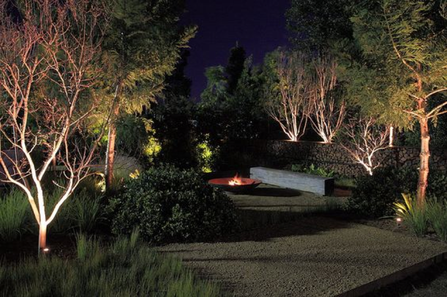 Exterior Lighting Tips in Highlighting Trees