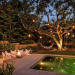 Your Ultimate Guide to Outdoor Lighting