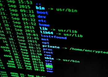 3 Innovative Solutions to Protect Your Tech Against Vulnerabilities