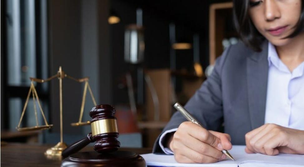 Future Lawyers