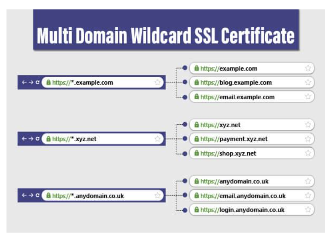 Multi-Domain Wildcard SSL Certificate